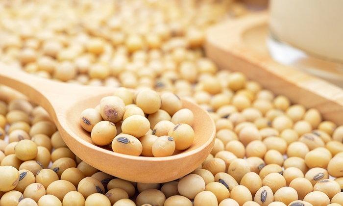 soy-bean