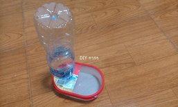 DIY กากๆ ที่ให้น้ำสัตว์เลี้ยงด้วยงบ 0 บาทกันเถอะ