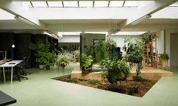 ออฟฟิศ รักษ์ธรรมชาติ สร้างสวนตกแต่งภายใน