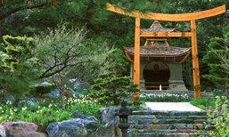 Japanese Garden – การจัดสวนสไตล์ญี่ปุ่น สวยงาม 28 แบบ