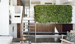 """3 วิธีเนรมิตผนังต้นไม้ไว้ใน """"บ้าน"""" ให้ได้ดั่งใจ"""