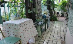 """"""" Vintage Garden """" สวนริมรั้วตามใจฉัน จัดเอง แม้พื้นที่จำกัด"""