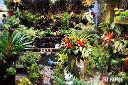 """มือใหม่ทำเอง กับ 9 วิธีจัด """"สวนแนวตั้ง"""" ในบ้าน (ไม่แคร์นักจัดสวน)"""