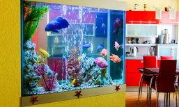 """วางตู้ปลาอย่างไรเพิ่มพลังบวกให้ """"บ้าน"""""""
