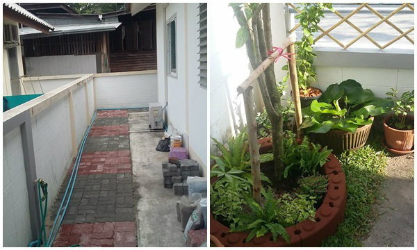 ได้เวลาจัดสวนน้อยข้างบ้านชั้นเดียว พื้นที่จำกัด ซะที