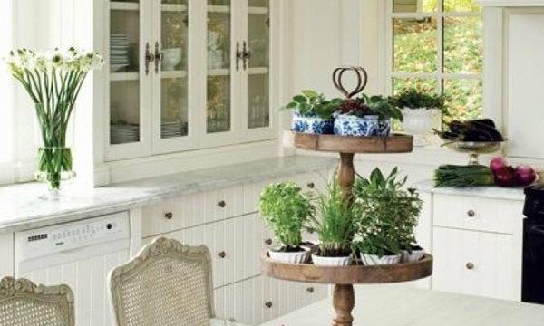 DIY จัดสวนต้นไม้กระถางเล็ก