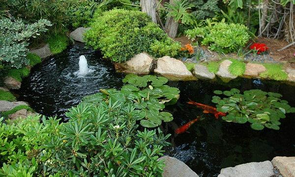 มาดูกัน! 7 สิ่งที่จะช่วยเติมเต็มให้สวนของคุณสมบูรณ์แบบ