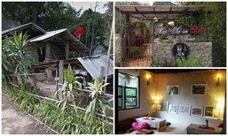 """เปลี่ยนเยินเป็นเยี่ยม ! รีโนเวท """"บ้านปูน  1 ชั้น"""" เป็นร้านกาแฟสไตล์อังกฤษริมลำธาร"""