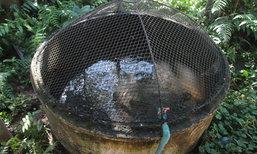ไอเดียเลี้ยงปลาดุก 100 ตัวในบ่อซีเมนต์ บ่อปลาประดิษฐ์ ทำง่ายแม้พื้นที่น้อย