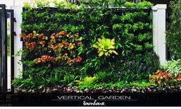รีวิวการ DIY. สวนแนวตั้ง vertical garden มาพร้อมระบบรดน้ำอัตโนมัติ ในงบไม่เกิน 10,000 บาท
