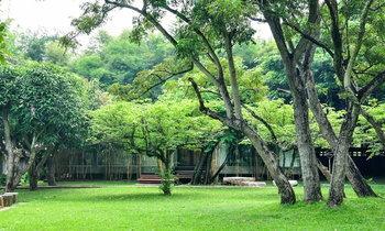 บ้านผนังปูนเปลือย ผสมผสานความเป็นพื้นบ้านและความทันสมัย โอบล้อมด้วยสวนไผ่