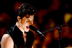 Grammy Awards 2019: Shawn Mendes