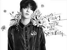 "Yesung ""Spring Falling"""