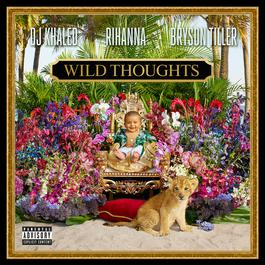wild-thoughts-player