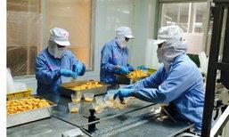 ลูกจ้าง รอด! ...กระทรวงแรงงานให้ฟรีรักษาทุกโรคถึง 1 ล้านบาท