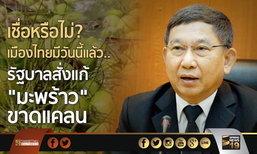 """เชื่อหรือไม่? เมืองไทยมีวันนี้เเล้ว.. รัฐบาลสั่งแก้ """"มะพร้าว"""" ขาดแคลน หลังปี 60 นำเข้า 1 แสนตัน"""
