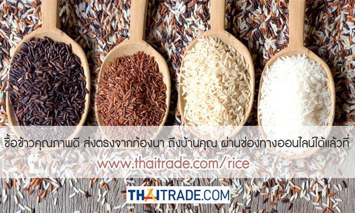 Thaitrade.com ช่วยชาวนา ชวนซื้อข้าวออนไลน์สั่งข้าวส่งด่วน