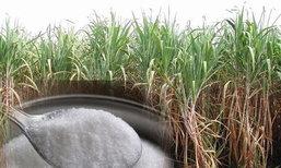 อุตฯน้ำตาลทราย-อ้อยทรุดหนักรอบ5ปี