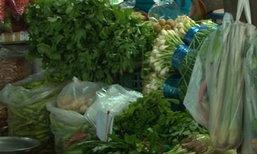 พาณิชย์เผยราคาผักชีวันนี้130บ./กก.