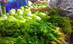 พณ.เผยราคาผักชีวันนี้ลดลงอีก10บ./กก.