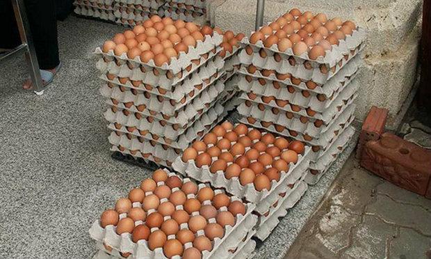 ผู้บริโภคจุก! ไข่ไก่ปรับราคาขึ้นฟองละ 20 สตางค์ ดีเดย์ไข่แพง 28 ตุลาคมนี้!