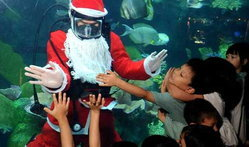 ซานต้าในโลกใต้ทะเล