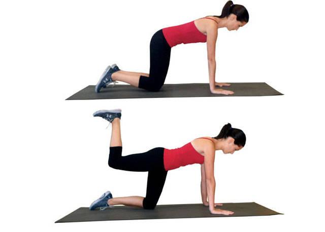 1464600450 quadruped hip extension2